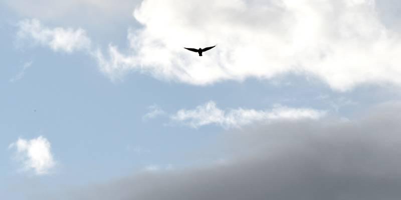 Ciel voilé, éclaircies, possibles averses… Météo mitigée ce samedi dans les Alpes-Maritimes